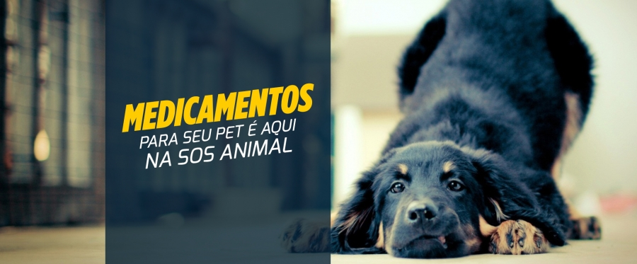 Medicamentos para seu pet é aqui na SOS Animal